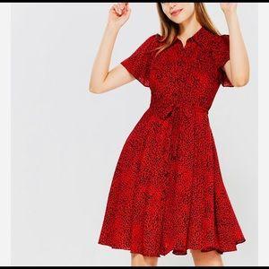 New NANETTE  LEPORE Cheetah dress